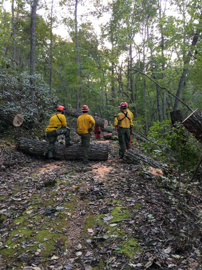 Volunteers helped cut and remove downed trees.